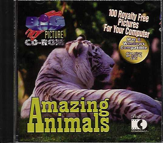 Packaging cover Big Picture: Amazing Animals.